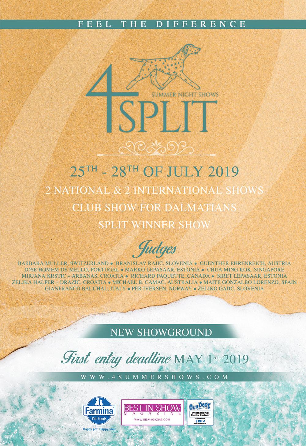4 Summer Night Shows Split 2019