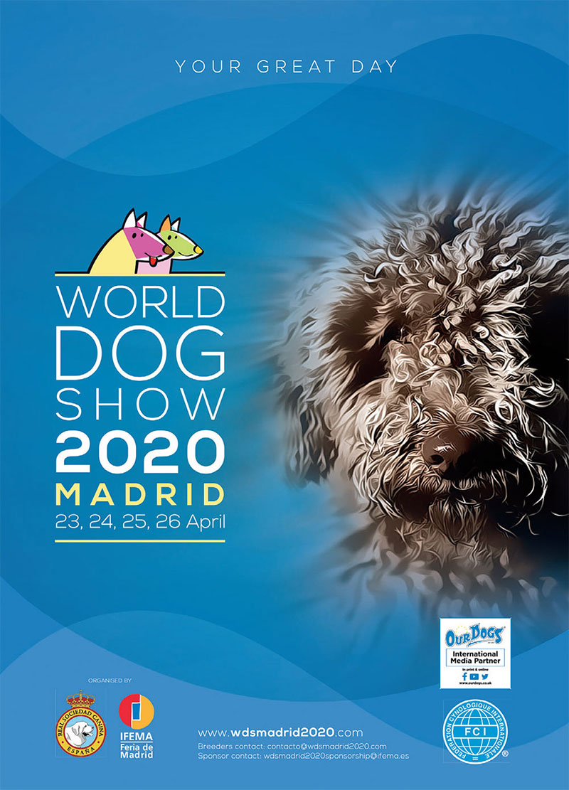 Watch Westminster Dog Show 2020.World Dog Show 2020 Madrid