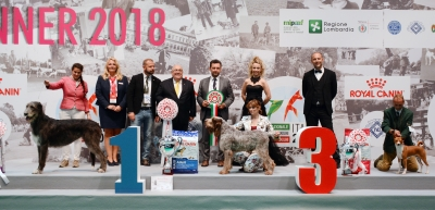 The best in show line up with the winner, organisers, main ring speakers, sponsors and media partner