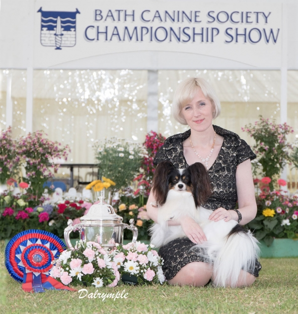Best in Show at last weekend's Bath Championship Show 2019 was Kathleen Roosens, pictured relaxing with Papillon, Planet Waves Forever Young Daydream Believer (Dylan) alongside the City of Bath challenge cup. This followed his BIS win at the National and Crufts.