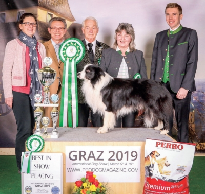 Best in Show judged by Erwin Deutscher (A) and winner of Group 1 judged by Marija Kavcic (SLO) was the Border Collie BORDERLINE COUNTRY DON GIOVANxNI owned by Poschacher Heidi.