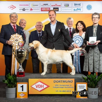 Best in Show at the Europasieger at Dortmund 2019 was Labrador Retriever Woefdram's Abercrombie bred, owned and handled by Sander Nugteren from Holland, under BIS judge Tamas Jakkel, seen here with the Vice President of the VDH Crista Bremmer right, members of the VDH and Vince Hogan representing OUR DOGS the international media partners for the event.