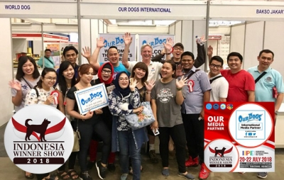 Indonesia Winners 2018