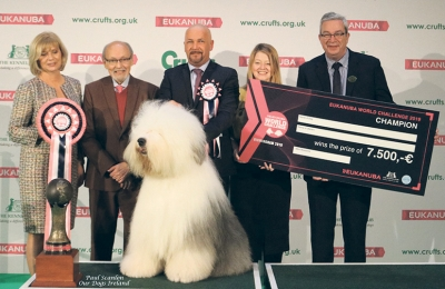 The winner of the Eukanuba World Challenge 2019 held at Crufts was the Old English Sheepdog, Ch Bottom Shaker Zephyr Dream owned by Jozsef Koroknai, bred by Istvan Szetmar and handled by Zsolt Hano. Pictured with Dorota Witowska (one of the judges at the event), Rafael de Santiago (President of the FCI), Nicola Fox-Haggarty (UK Team Leader Spectrum Brands) and Steve Croxford (KC Chairman) presenting the cheque.