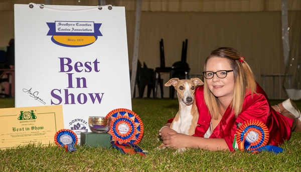 Best in Show was the Whippet Crosscop Let It Shine For Supeta JW, owned by Mrs L Morris, Mr G Waddell & Miss F Mycroft.