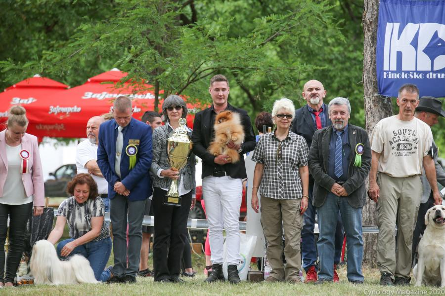 First European dog show takes place