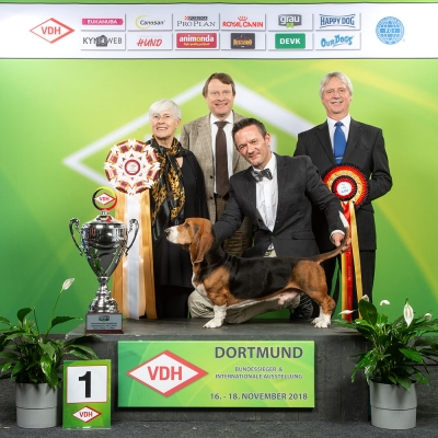 Best in show of the International show of Dortmund in Germany last weekend was the Basset Artesien Normand, Virtuvians Baxter owned by Roger Schielke and judged by Hassi Assenmacher-Feyel, Germany. Making the presentations were Peter Friedrich, the President of the VDH and Vince Hogan of OUR DOGS the International Media Partner of the VDH
