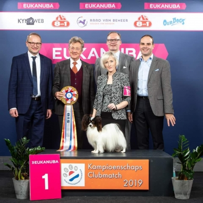 2nd Championship Clubmatch of the First Companion Club Netherlands winner was the Papillon Ch Planet Waves Forever Young Daydream Believers owned breed and handled by Kathleen Roosens