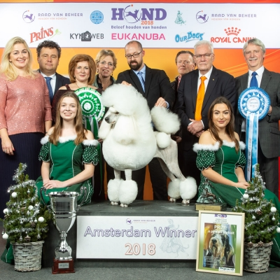 Best in Show was the Standard Poodle, Ch Afterglow Poppa Don't Preach. 'Grace' is owned by Maud Nilsson, Tom Isherwood & Jason Lynn and was bred by Michael Gadsby, Jason Lynn & Tom Isherwood. Also pictured (l-r), Inga Siil (Group judge),  Rony Doedijns (Managing Director Dutch KC); BIS judge Ekaterina Senashenko from Russia, Monique van Wijk (artist), Jack Alberts (President Dutch KC), Hugo Stempher (Dutch KC) and Vince Hogan (OUR DOGS MD, International Media Partners).