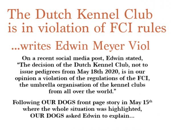 The Dutch KC in violation of FCI rules