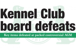 Kennel Club board defeats