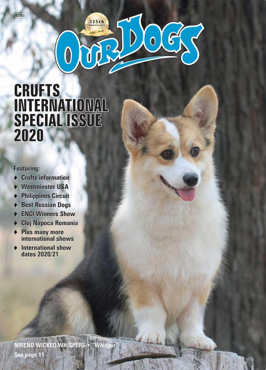 Crufts International Special 2020