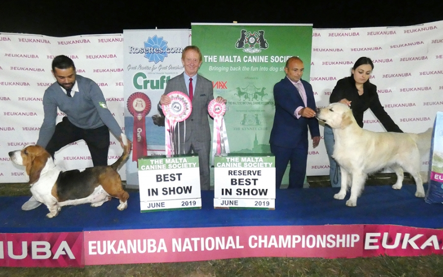 On the first day, Best in Show chosen by Tom H. Johnston from the UK, was the Basset Hound, Hili & Rathmell's Int Port Ch Apple Jack Dos Sete Moinhos; Res BIS was the Golden Retriever, Xuereb's Boston Perfect Forever.