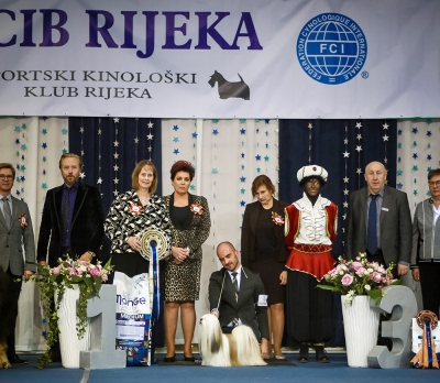 Rijeka International Sunday BIS and Supreme BIS was the Lhasa Apso, Amesen All About Me, bred by Longmire, Camac and Glen, and owned by Miele Paolantoni from Italy and handled by Javier Mendikote. Sunday BIS Judge was Kim Leblanc (Canada).