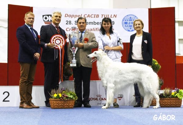 Saturday's BIS and Group 10 winner was the Borzoi, Fonezel Znoy Extrim Avangard, bred and owned by Elene Bleze from Russia. Judges were Dusan Paunovic, Dr Tamas Jakkel and Luis Catalan with show organiser (right) Hedi Kirschbicher.