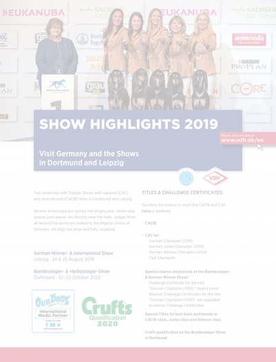 VDH Show Highlights 2019