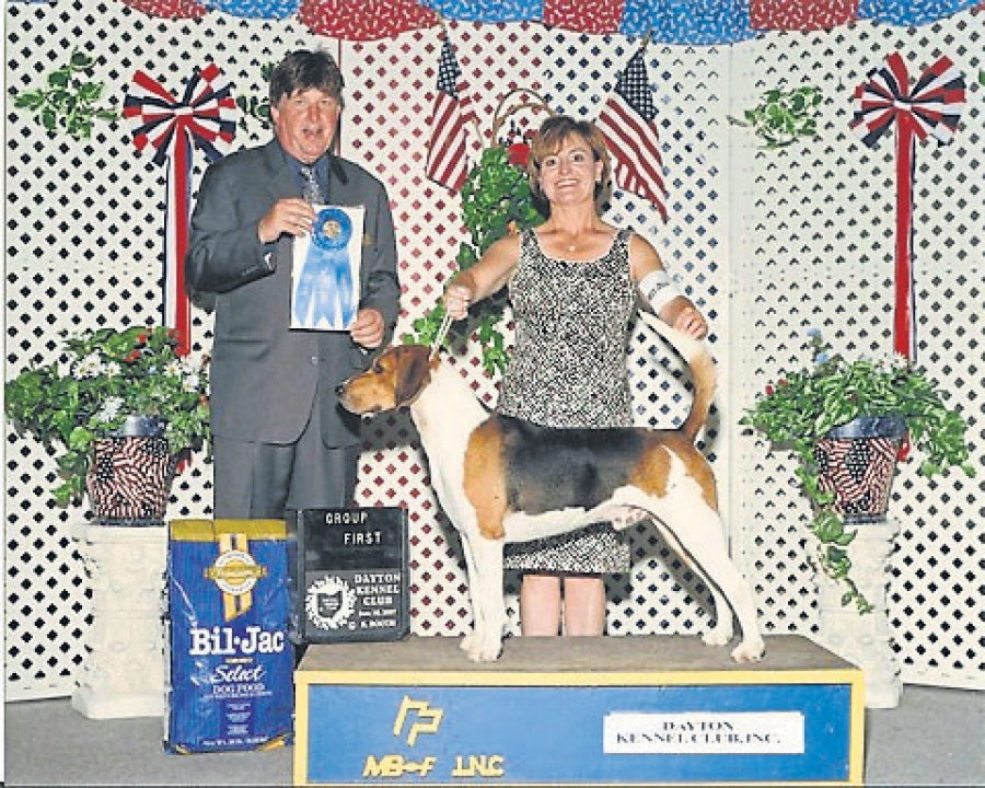 AKC judges approval process
