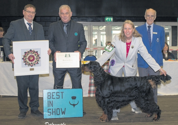 Best in Show was judged by Richard Kinsey from the twelve breeds present his winner was the Gordon Setter Sh Ch Ludstar Frederick Frankenstein (imp It) owned and handled by Frances Boxall. Representing Scottish Breeds are the Secretary John McCreath and Chairman Ken Aird.
