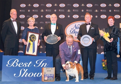National Dog Show USA 2019