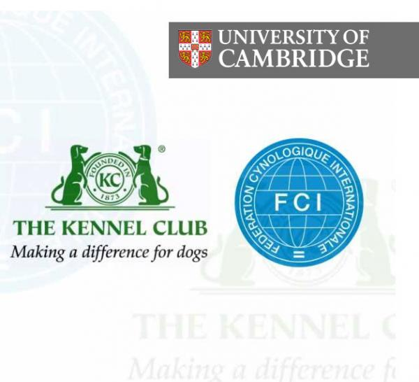 FCI delighted at KC support