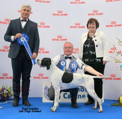 Combined Canine National 2019